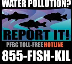 PFBC toll-free hotline 855-FISH-KILL
