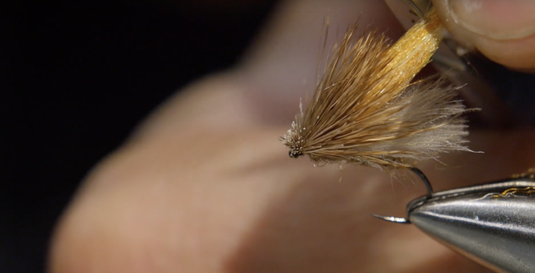Clueless Caddis Dry Dropper