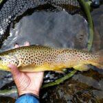 Special Raffle for Julie Szur Fishing Trip