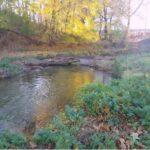 Spring Creek Watershed Association On the Horizon
