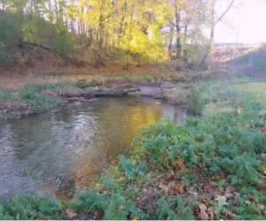 Spring Creek Watershed Association On the Horizon