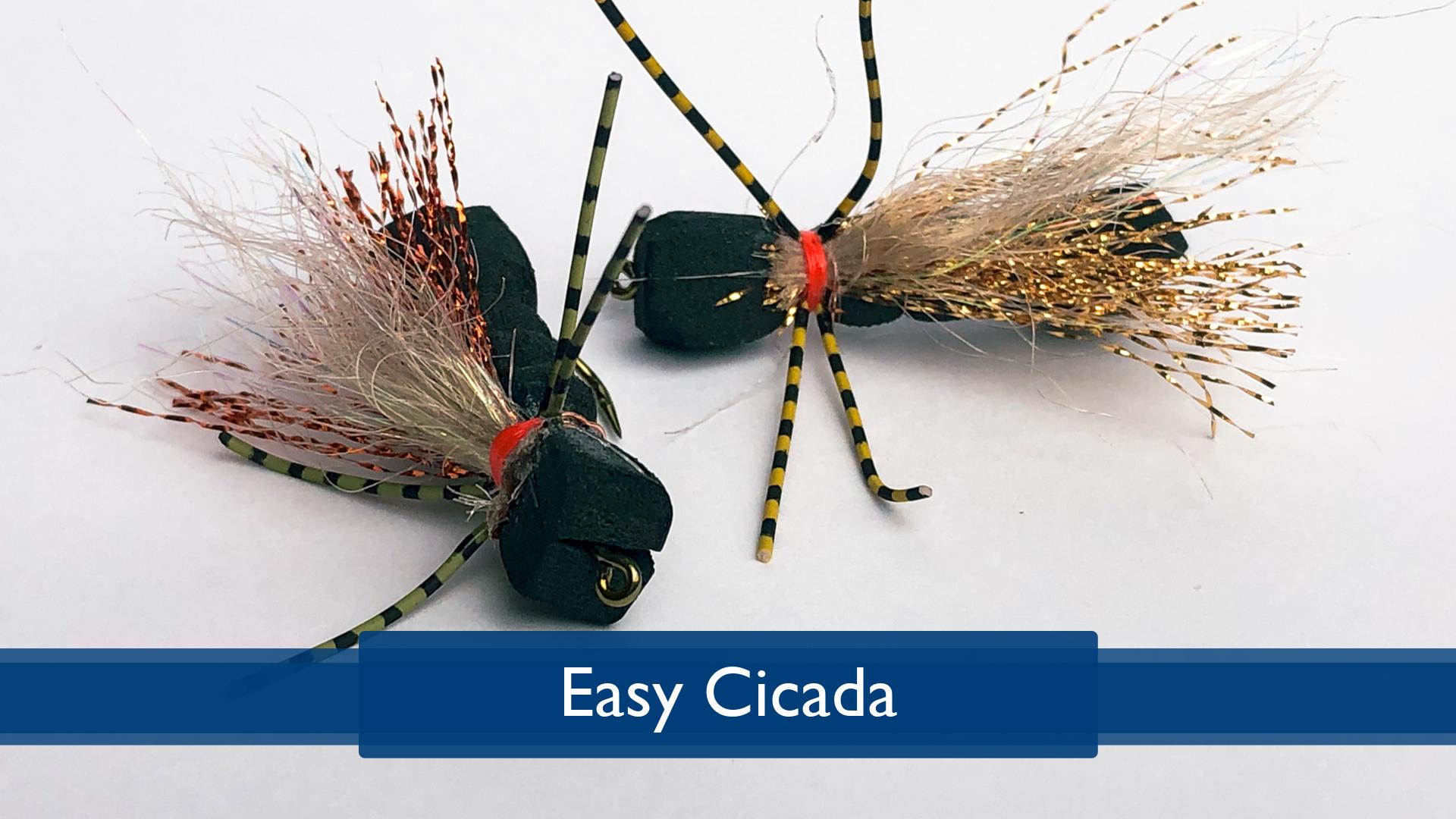 Tying the Easy Cicada with Rich DiStanislao