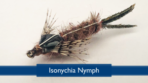 Tying the Isonychia Nymph with Rich DiStanislao